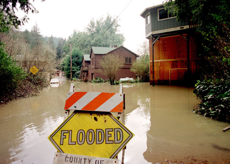 Flood insurance and risk transfer