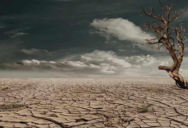 drought-desert-image