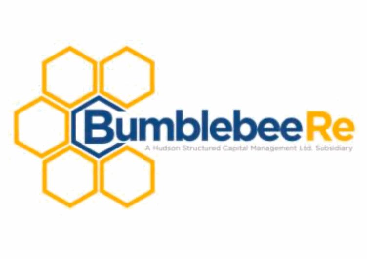 bumblebee-re