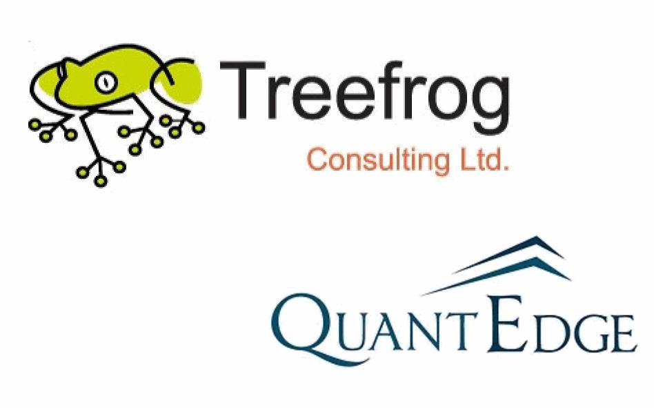 treefrog-consulting-quantedge