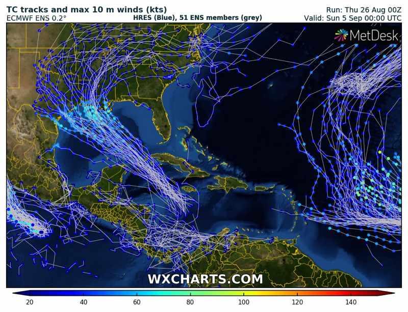 gulf-tropical-hurricane-forecast-model-uncertainty